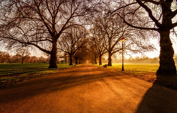 Картинка Sunrise, London, Battersea Park