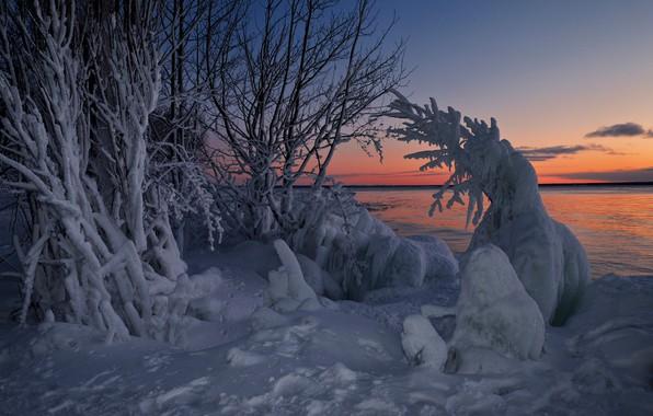 Картинка зима, снег, деревья, закат, озеро, Канада, Онтарио, Canada, Ontario, Озеро Верхнее, Lake Superior, Залив Уайтфиш, …