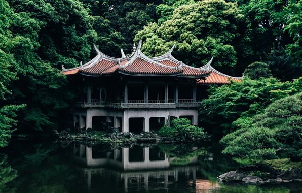 Картинка Природа, Озеро, Деревья, Япония, Токио, Храм, Архитектура, Shinjuku Gyoen old Goryotei