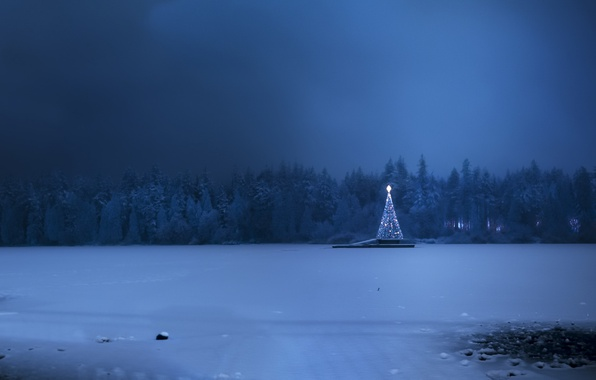 Картинка холод, зима, снег, праздник, ёлка