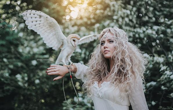 Картинка девушка, сова, птица, волосы, локоны, сипуха, Антон Харисов, Лерочка Половинчик