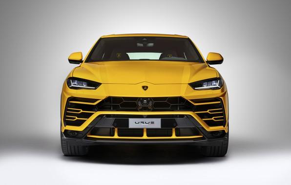 Картинка Lamborghini, Light, Yellow, New, Urus, VAG, LED