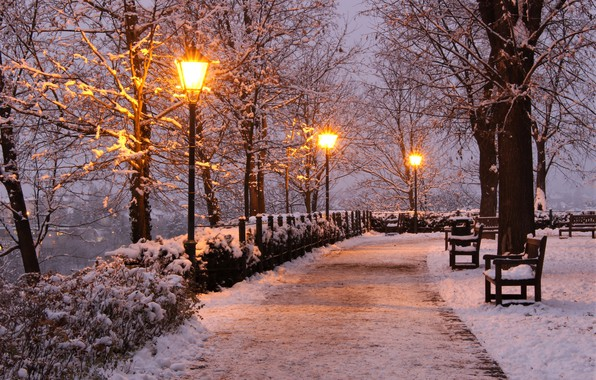 Картинка зима, снег, деревья, огни, парк, вечер, Чехия, фонари, дорожка, аллея, скамейки, Brno, Брно