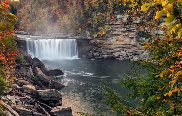 Картинка осень, лес, деревья, брызги, туман, река, водопад, США