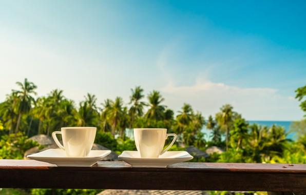 Картинка море, пляж, лето, пальмы, отдых, берег, кофе, утро, чашка, балкон, summer, beach, каникулы, sea, cup, …