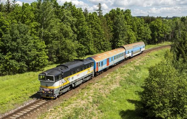 Картинка деревья, путь, поезд, вагоны, железная дорога, локомотив, Locomotive, railroads