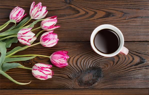 Фото обои цветы, кофе, тюльпаны