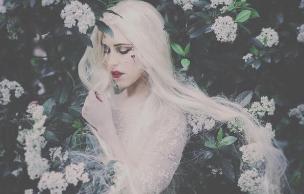 Картинка девушка, настроение, макияж, кусты, длинные волосы, белые волосы, цветки