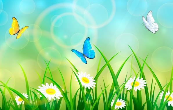 Картинка лето, трава, бабочки
