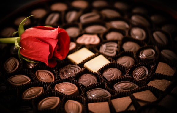Картинка цветок, роза, шоколад, конфеты, набор, ассорти