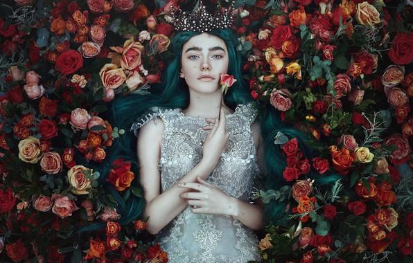 Картинка взгляд, девушка, цветы, стиль, настроение, розы, корона, платье, принцесса, Bella Kotak