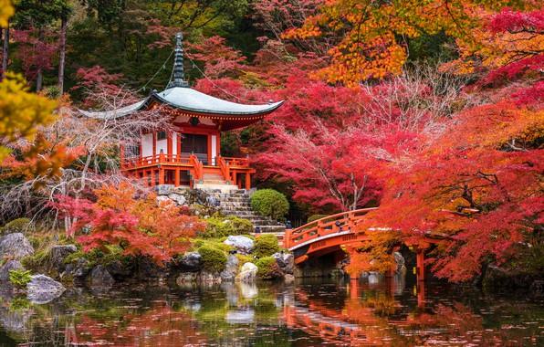 Картинка осень, деревья, пруд, парк, камни, Япония, пагода, мостик, Киото, кусты