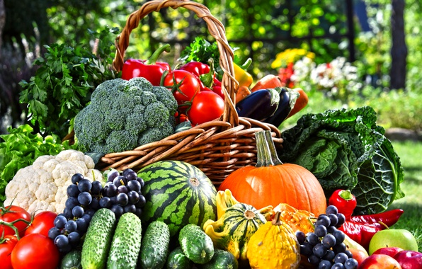 Картинка зелень, корзина, яблоки, арбуз, сад, виноград, баклажаны, тыква, перец, фрукты, овощи, помидоры, морковь, капуста, огурцы