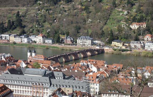Картинка мост, река, Дома, Германия, Панорама, Крыши, Здания, Bridge, Germany, River, Panorama, Хайдельберг, Heidelberg, Гейдельберг
