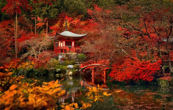 Картинка деревья, мост, пруд, Япония, сад, Киото, храм Дайго-дзи Bentendo Hall
