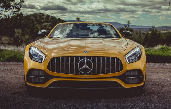 Картинка car, Roadster, Mercedes, logo, yellow, Mercedes Amg, Mercedes Amg Gt Roadster, Mercedes Amg Gt