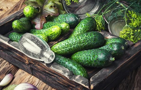 Картинка зелень, банка, перец, овощи, петрушка, огурцы, чеснок, разносол
