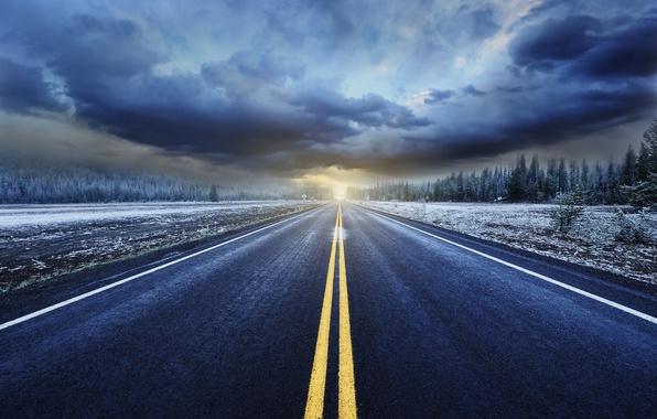 Картинка дорога, лес, небо, облака, свет