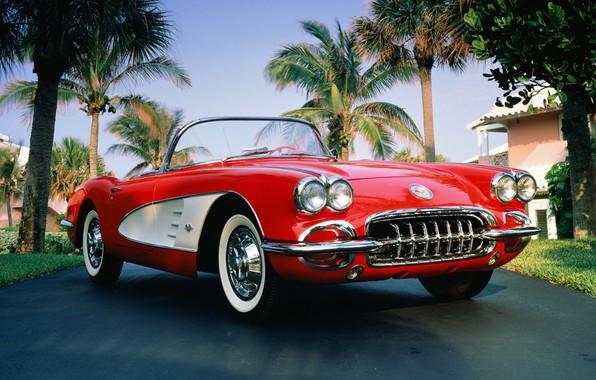 Картинка пальма, 1960, corvette, кабриолет, chevrolet, convertible