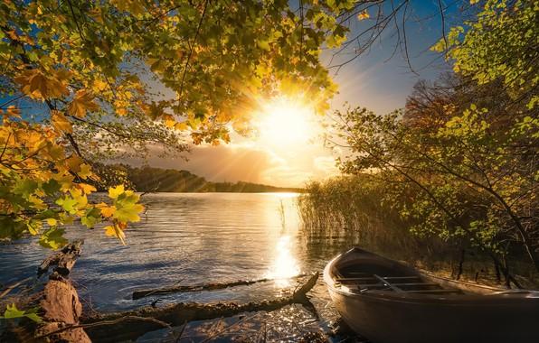 Картинка осень, свет, озеро, лодка, утро