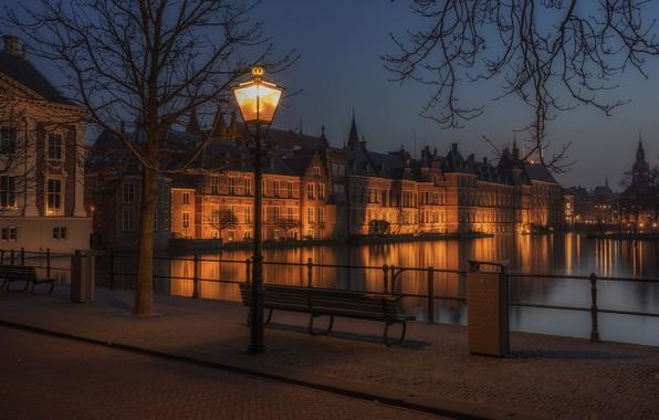 Картинка Нидерланды, Голландия, Гаага, Den Haag, Hofvijver