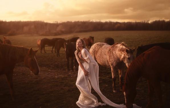 Картинка девушка, лошади, табун, Aleah Michele, Seek and return