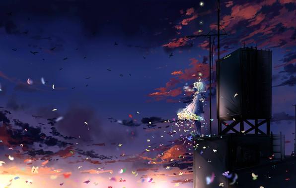 Картинка бабочки, птицы, девочка, противогаз, антенны, голубые волосы, art, ночное небо, на крыше, розовые облака, Iluluchwan