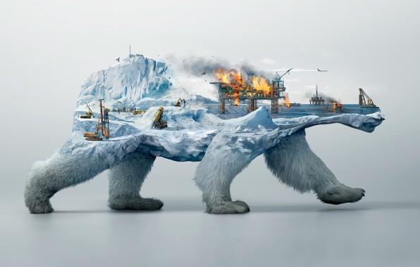 Картинка пожар, коллаж, белый медведь, бурова вышка
