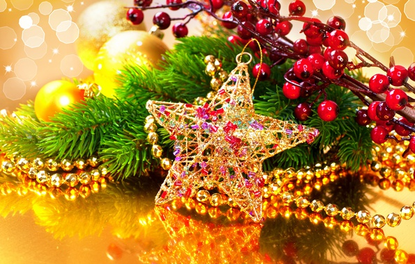 Фото обои украшения, ветки, отражение, ягоды, звезда, бусы