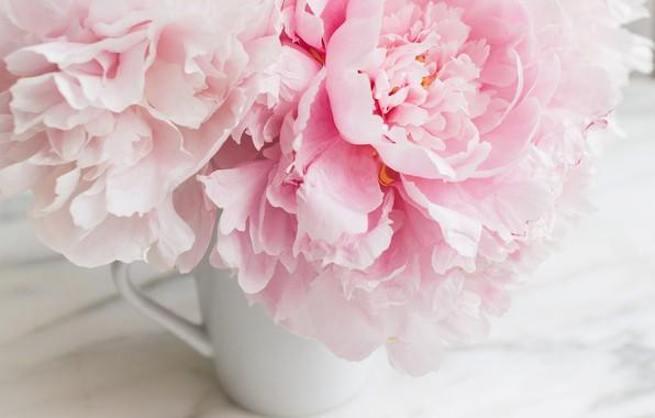 Обои цветы букет мрамор Pink Flowers пионы Peonies