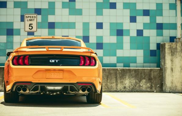 Картинка Ford, вид сзади, 2018, Mustang GT, Fastback Sports