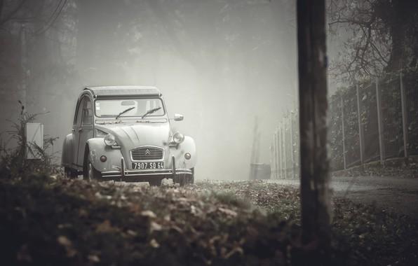 Картинка машина, туман, улица