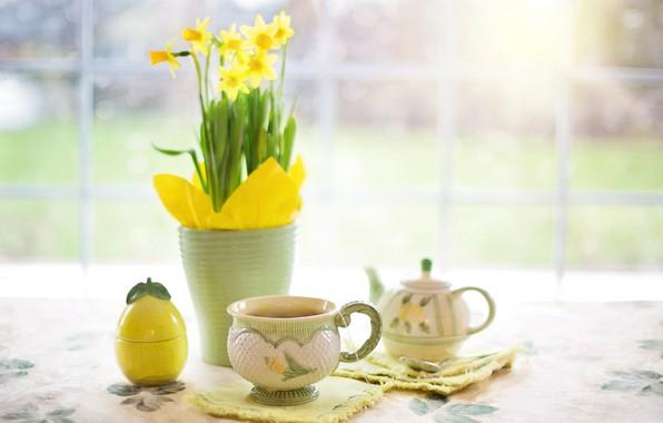 Картинка цветы, стол, чай, чайник, чашка, ваза, натюрморт, нарцисс