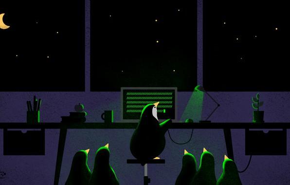 Картинка компьютер, цветок, небо, звезды, свет, ночь, стакан, стол, луна, книги, лампа, яблоко, карандаши, пингвины, окно, …