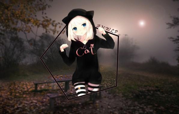 Картинка девушка, туман, весна, аниме, лавочка, неко, cat, madskillz