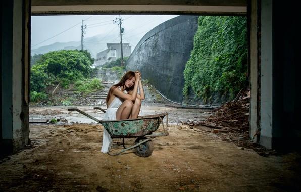 Фото обои ситуация, девушка, тележка