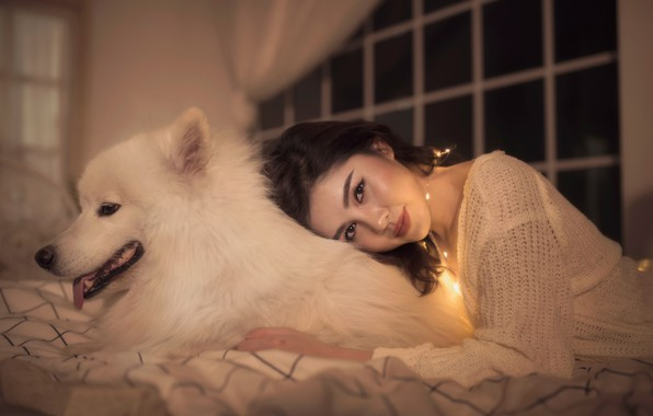 Картинка взгляд, девушка, улыбка, настроение, собака, дружба, азиатка, друзья, самоед