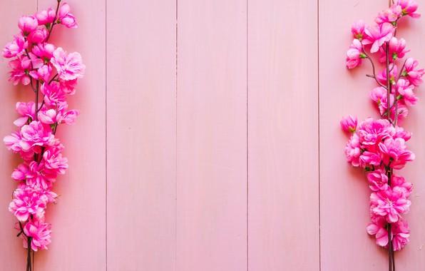 Картинка цветы, ветки, фон, розовые, wood, pink, blossom, flowers, spring