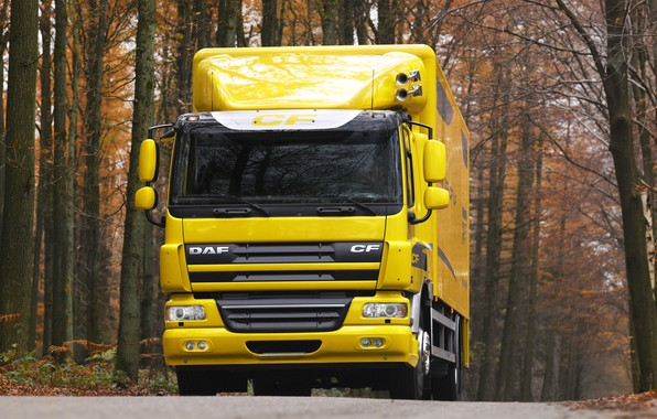 Картинка дорога, осень, деревья, жёлтый, фургон, DAF, ДАФ, бортовая платформа, 4х2, DAF CF