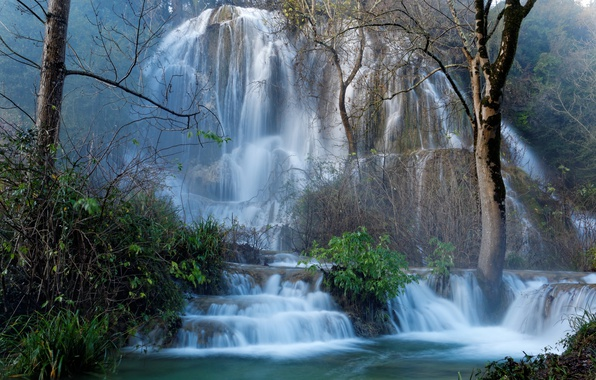 Картинка лес, деревья, скала, Франция, водопад, каскад, кусты, Larnas