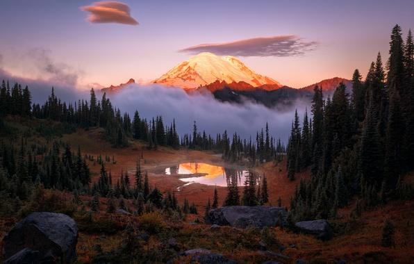 Картинка лес, небо, свет, туман, озеро, отражение, гора, утро, США, национальный парк, штат Вашингтон, Каскадные горы, …