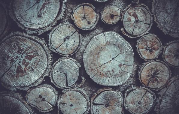 Картинка природа, дерево, бревна, дрова, текстуры, nature, wood, texture, wood texture