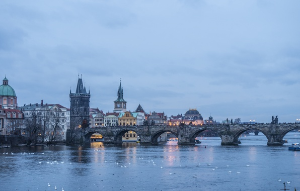 Картинка water, birds, evening, Prague, architecture, cityscape, ducks, cloudy, Karlův most, Czech Republic, Charles Bridge, Vltava …