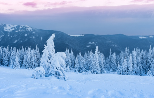 Картинка зима, лес, небо, облака, снег, пейзаж, горы, тучи, пасмурно, холмы, вершины, красота, сказка, ели, сугробы, …