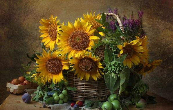 Картинка цветы, яблоко, подсолнух, натюрморт, слива
