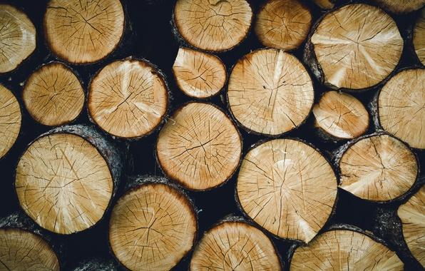Картинка фон, дерево, брёвна