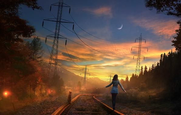 Картинка дорога, лес, небо, кот, девушка, закат, луна, рельсы, вечер, арт, железная дорога