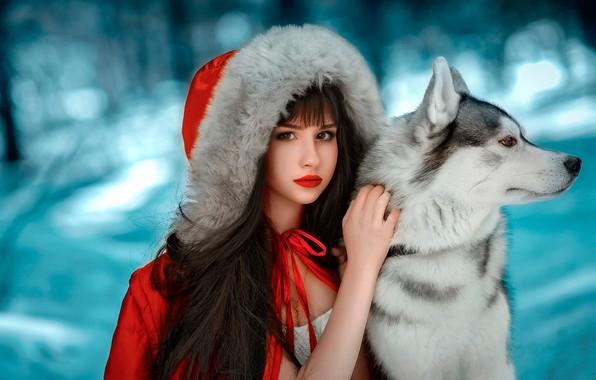 Картинка зима, лес, взгляд, девушка, снег, фон, друг, собака, макияж, брюнетка, куртка, прическа, капюшон, мех, в …