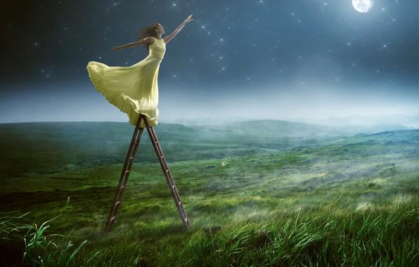 Картинка зелень, поле, небо, трава, девушка, поза, туман, улыбка, настроение, луна, звёзды, макияж, платье, прическа, лестница, …