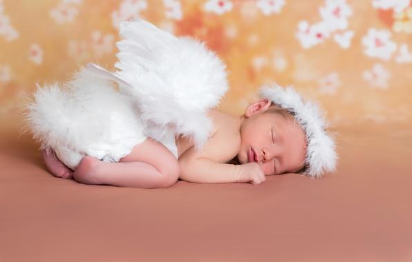 Фото обои сон, wings, младенец, спит, ангелочек, sleep, angels, спящий, ангел, Infants, малыш, крылья